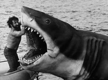 Shark clipart bruce #11