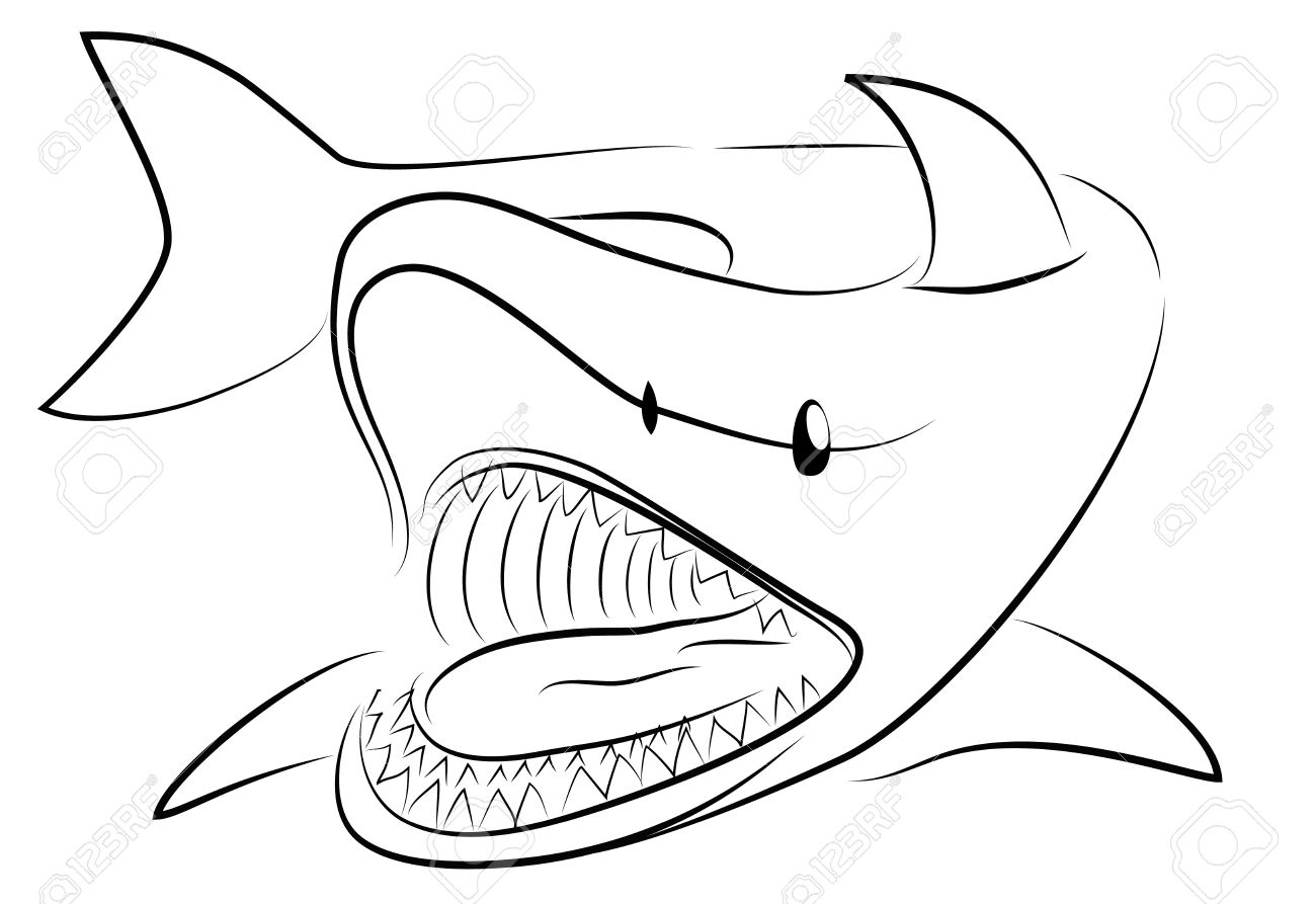 Drawn shark hand drawn With With Shark Outline Free