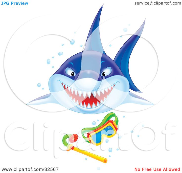 Shark clipart living thing #12