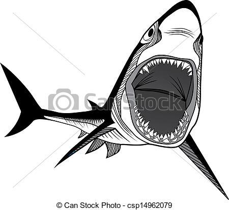 Shark clipart shark head #7