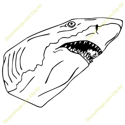 Shark clipart shark head #6