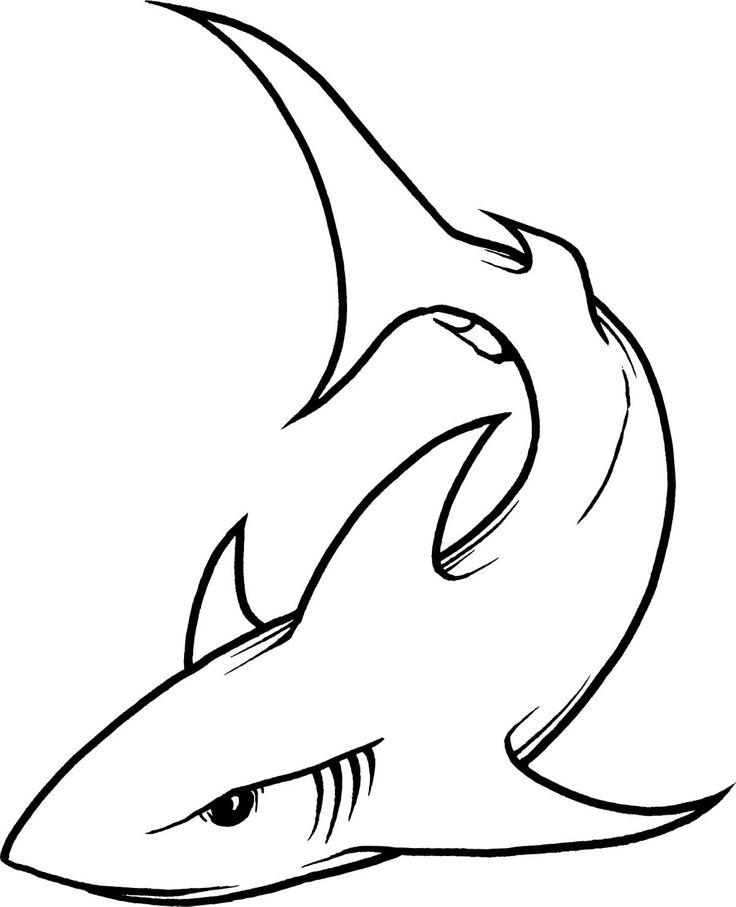 Fins clipart shark head Art line drawing Clip Sharks