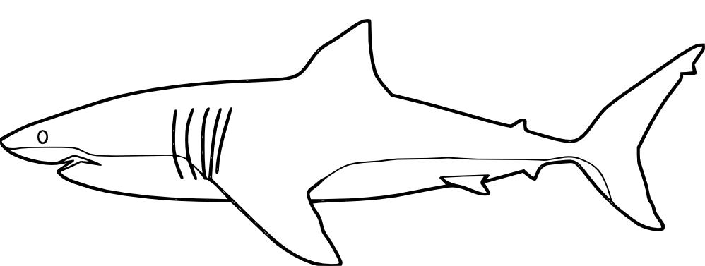 Shark clipart sweet #5