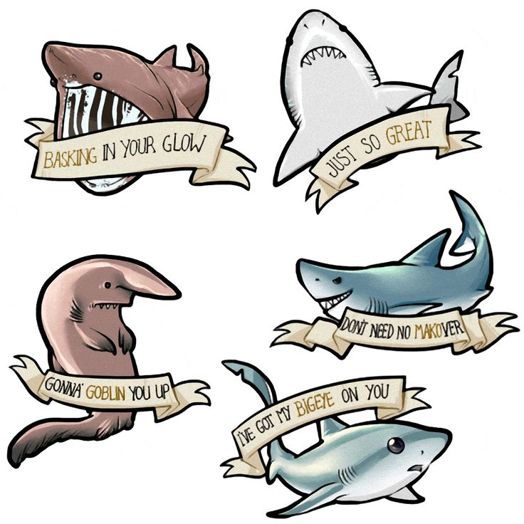 Bull Shark clipart jaws Best Pinterest on ideas puns
