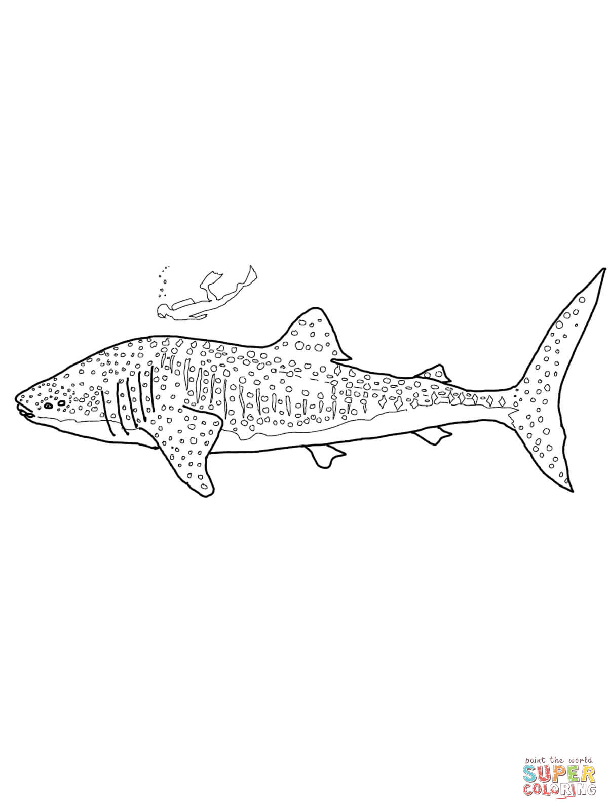 Sharkwhale clipart coloring #10