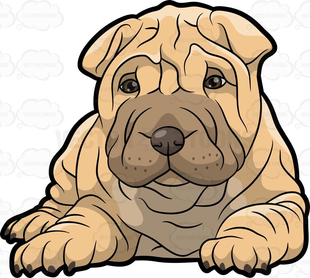 Sharpei clipart Pei Shar Puppy A A