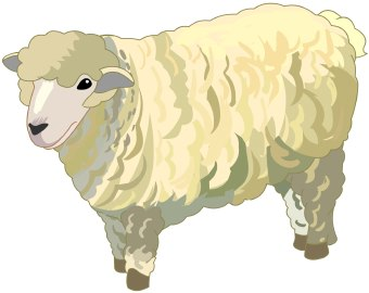 Sheep clipart Sheep and clip clip sheep