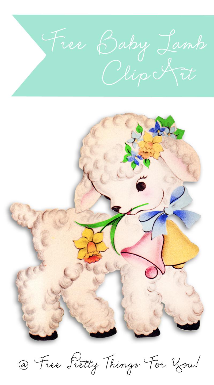 Sheep clipart baby lamb #10