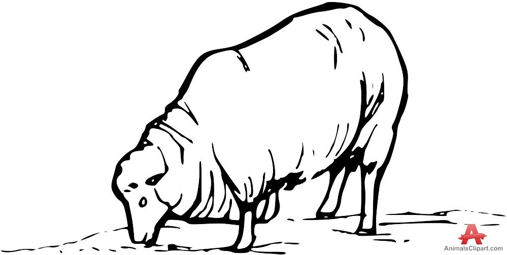 Sheep clipart sheep grazing #5
