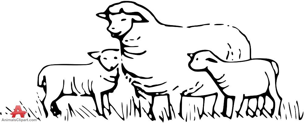 Sheep clipart sheep grazing #8