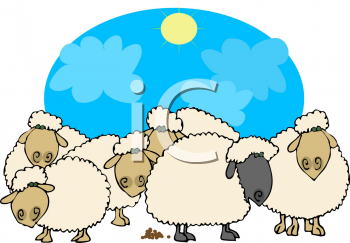 Sheep clipart sheep herd #5