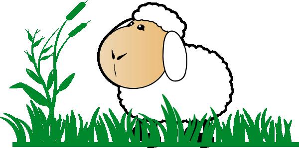 Sheep clipart sheep herd #8