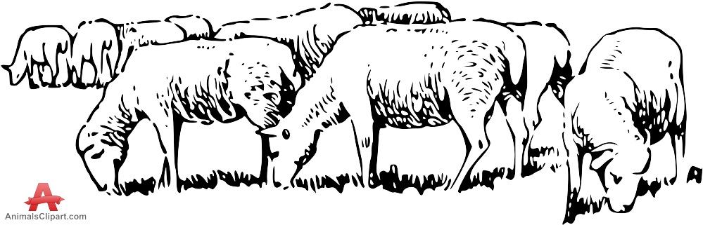 Sheep clipart sheep herd #6