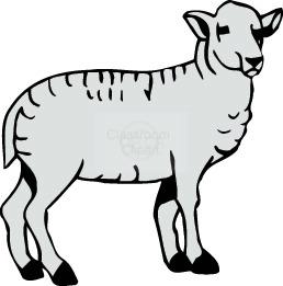 Sheep clipart transparent background #7