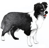 Sheepdog clipart Sitting Clipart Collection Sheepdog Sheepdog