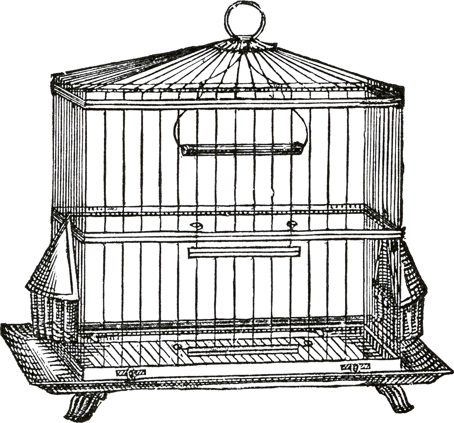 Birdcage clipart transparent (so the Collage the background