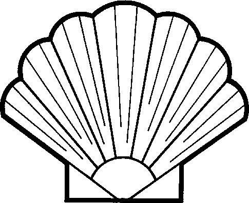 Shell clipart Shell Seashell Clipart Clipartix Free