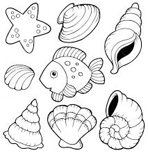 Shell clipart colouring page #15
