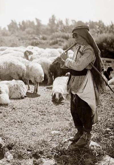 Shepherd Boy clipart sheep herder He Young Arab on