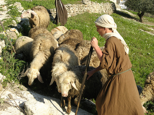Shepherd Boy clipart sheep herder Photo knew…he boy David was