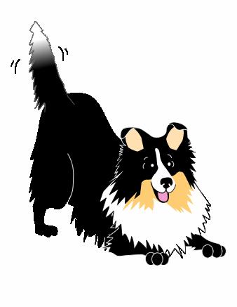 Shetland Sheepdog clipart Sheltie Clipart Download Sheltie Clipart