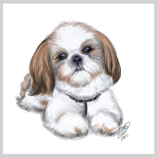Shih Tzu clipart cartoon #15
