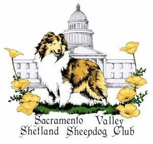 Shih Tzu clipart CA the Sheepdog Sacramento Sale