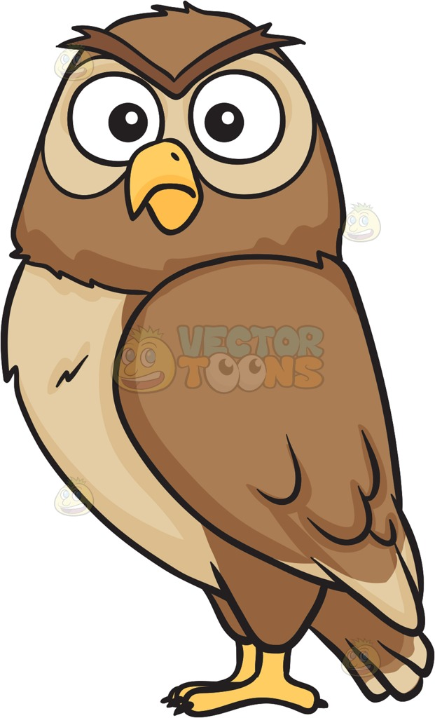 Shocking clipart big eye Big night shocked owl two