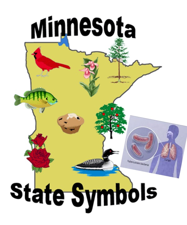 Shoot clipart tuberculosis Minnesotastan immigrants one than More