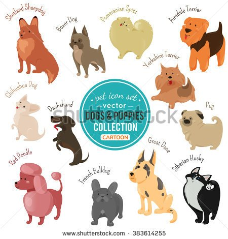 Shoot clipart veterinarian And puppy Cute and white