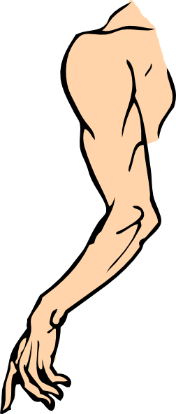 Shoulder clipart Clip Free Clip Clip on