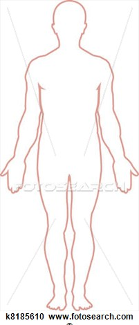 Shoulder clipart body outline Free Human Clipart Panda Clipart
