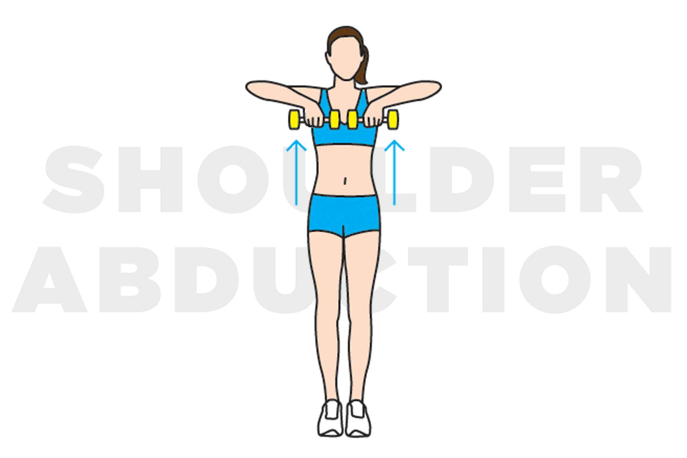 Shoulder clipart neck Reader's Neck Exercises Shoulder Digest