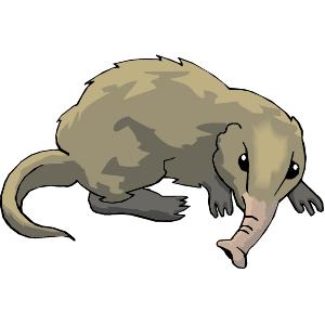 Otter clipart shrew Shrew Clipart Clip #1 Free