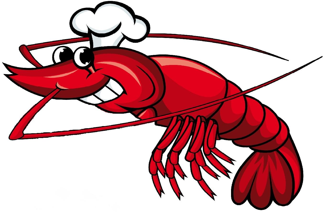 Shrimp clipart #13