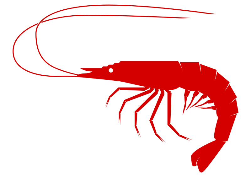 Shrimp clipart Shrimp Clipart to Free use