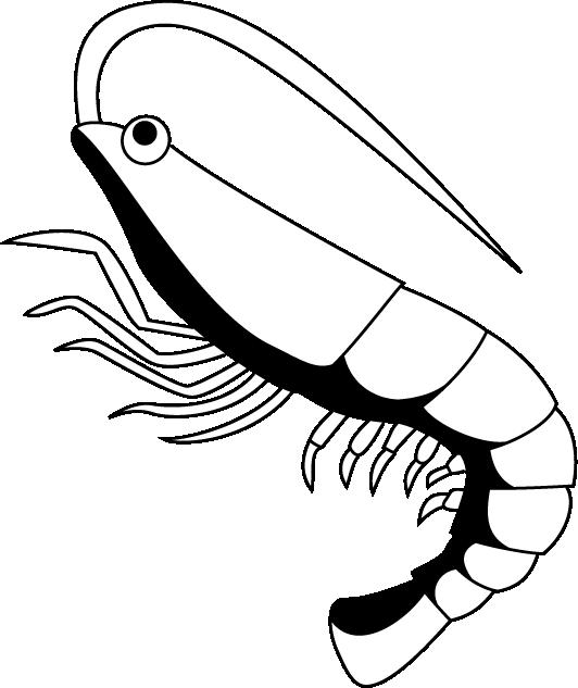 Black clipart shrimp Shrimp Shrimp related art Free