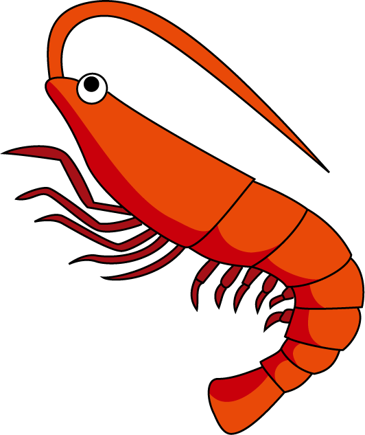 Crustacean clipart udang And PNG png Backgrounds Png:Shrimps