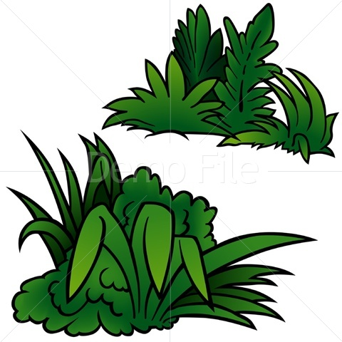 Plant clipart vegetation Download Clipart on  Free