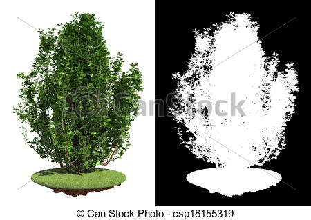 Shrub clipart grass On Mask Mask on Isolated