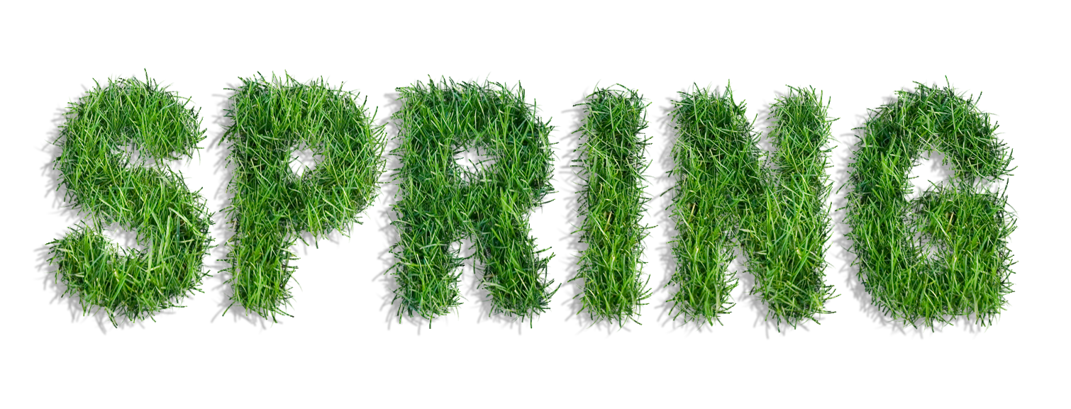 Shrub clipart grass Quality Grass of Yopriceville Tags: