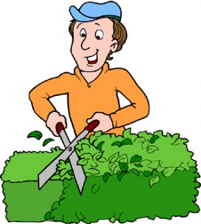 Hedges clipart shrubbery Desert Cliparts Cliparts Zone Hedge