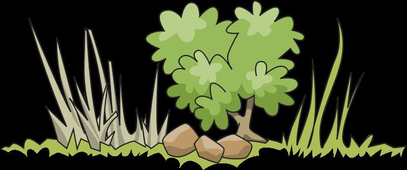 Plant clipart shrub Clipart Bush clipart clipart Download