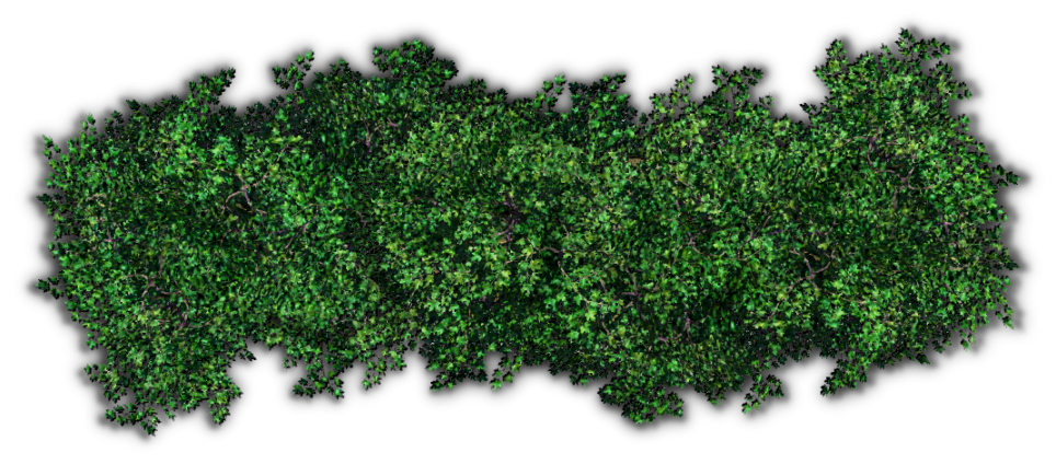Hedges clipart shrubbery Pic PNG PNG Transparent