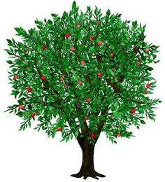 Season clipart summer tree #4
