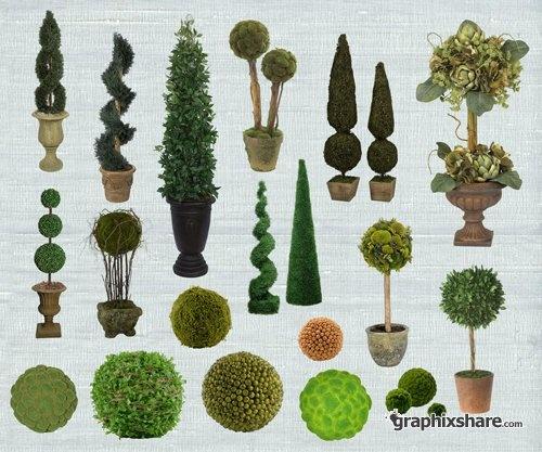 Shrub clipart topiary 93 Pinterest  best on