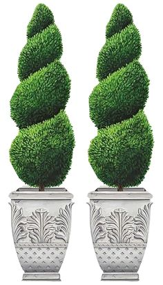 Shrub clipart topiary TOPIARIES POTTED ART CLIP PLANTS