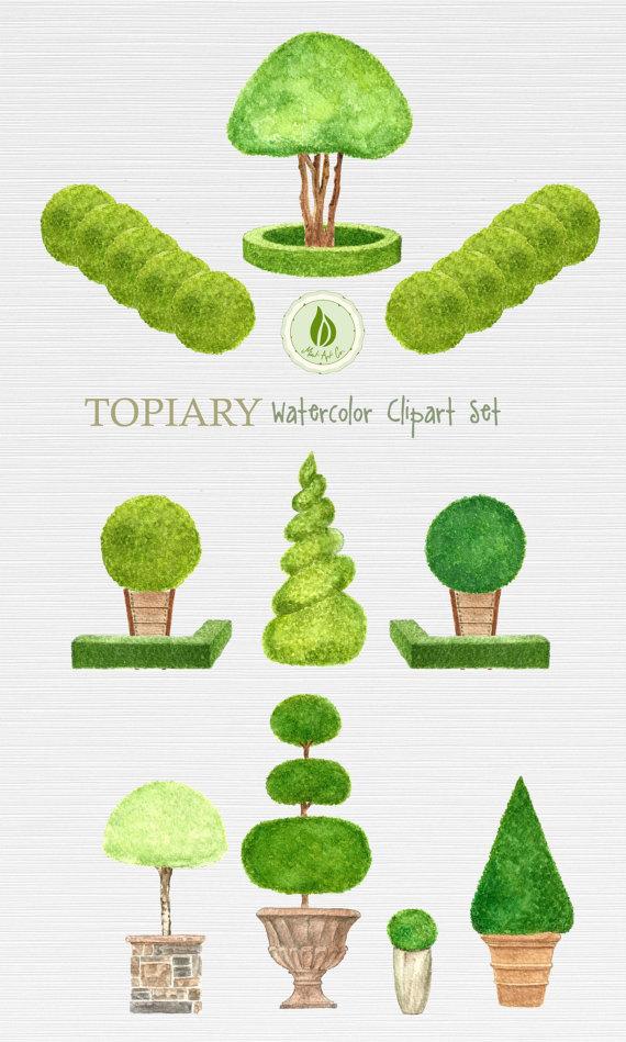 Shrub clipart topiary English Topiary Garden Shrubs Topiary