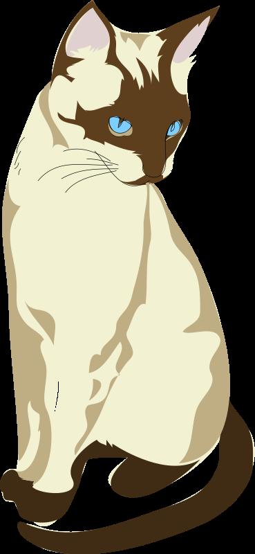Siamese Cat clipart  Art Cat Free Siamese