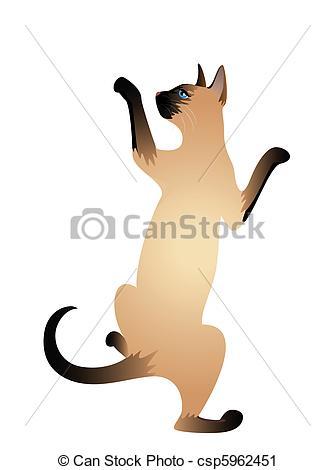 Siamese Cat clipart Beautiful csp5962451 Clip of csp5962451